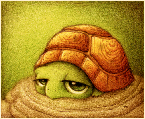 Tortuga__by_faboarts